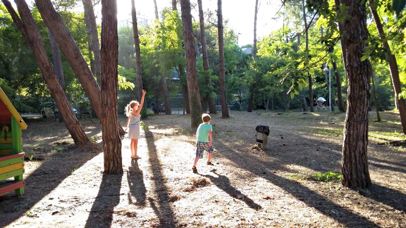 pine forrest park by the beach | zadina | cesenatico | rimini | ital