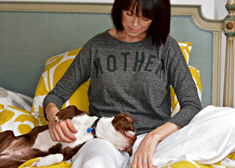 Buying a Boston Terrier Puppy | MOTHER T-shirt